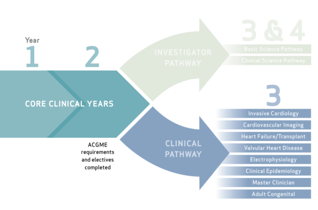clinical-pathway-graphic