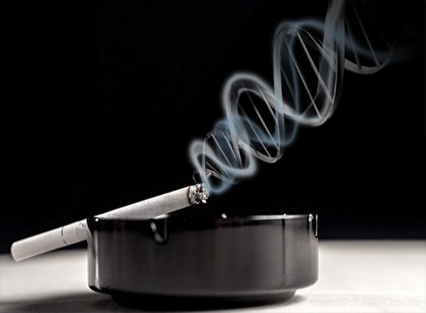 Study of smoking and genetics illuminates complexities of blood pressure